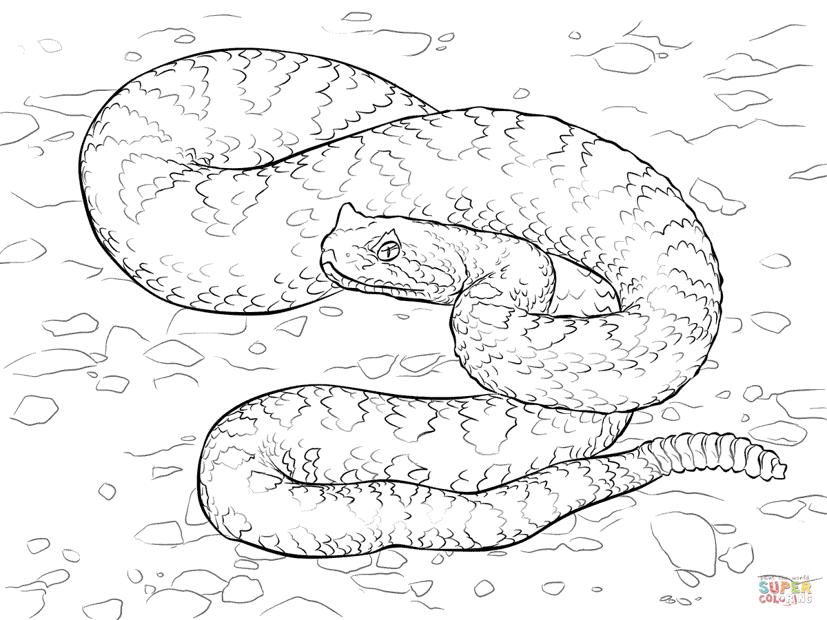 Desert Coloring Pages - Eskayalitim