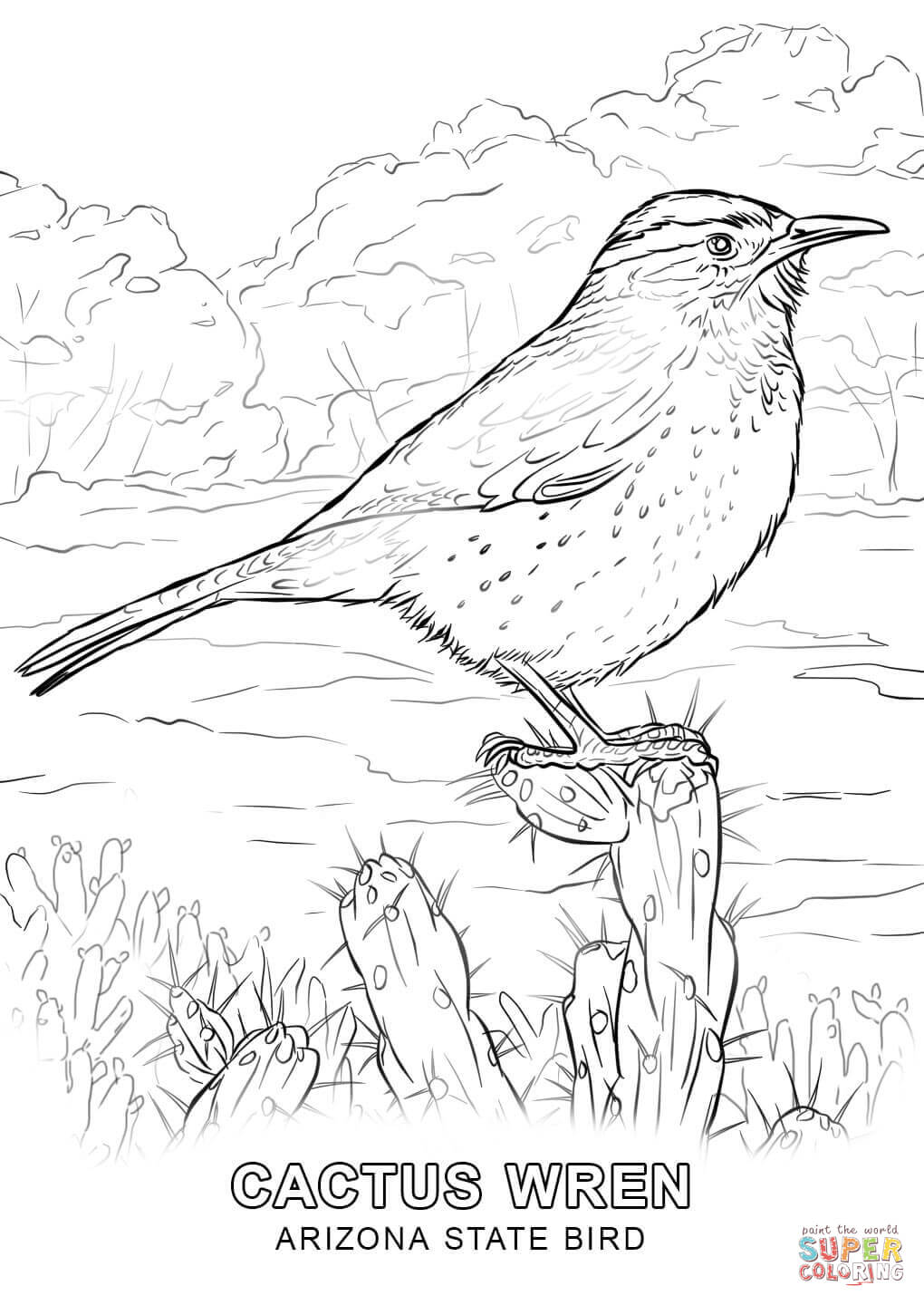 cactus wren coloring page