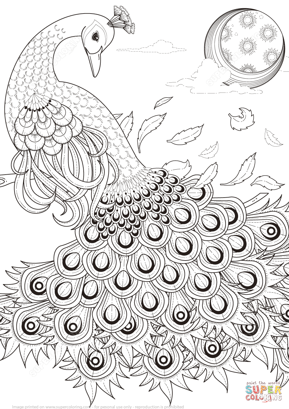 Click the graceful peacock coloring pages to view printable