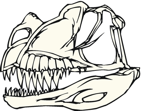 Dinosaur Bones coloring page Free Printable Coloring Pages