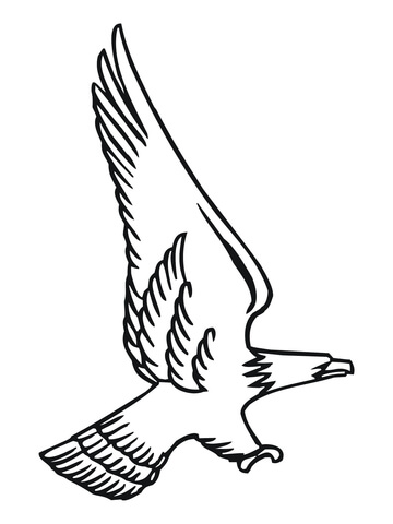 Attacking Bald Eagle coloring page Free Printable Coloring Pages