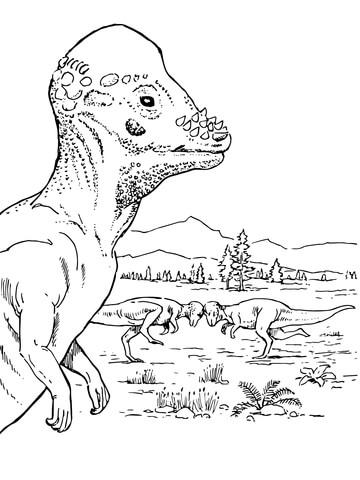 Pachycephalosaurus Dinosaur coloring page Free Printable Coloring - coloring dinosaur