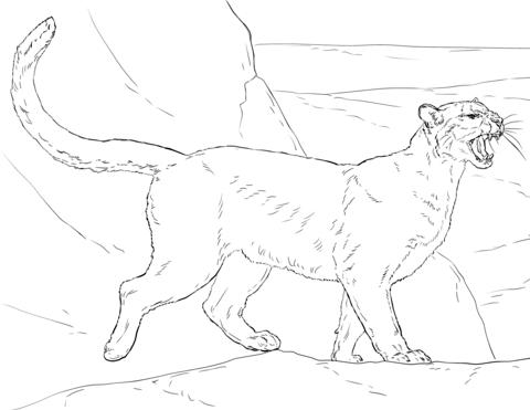 92 cougar del Schaltplan