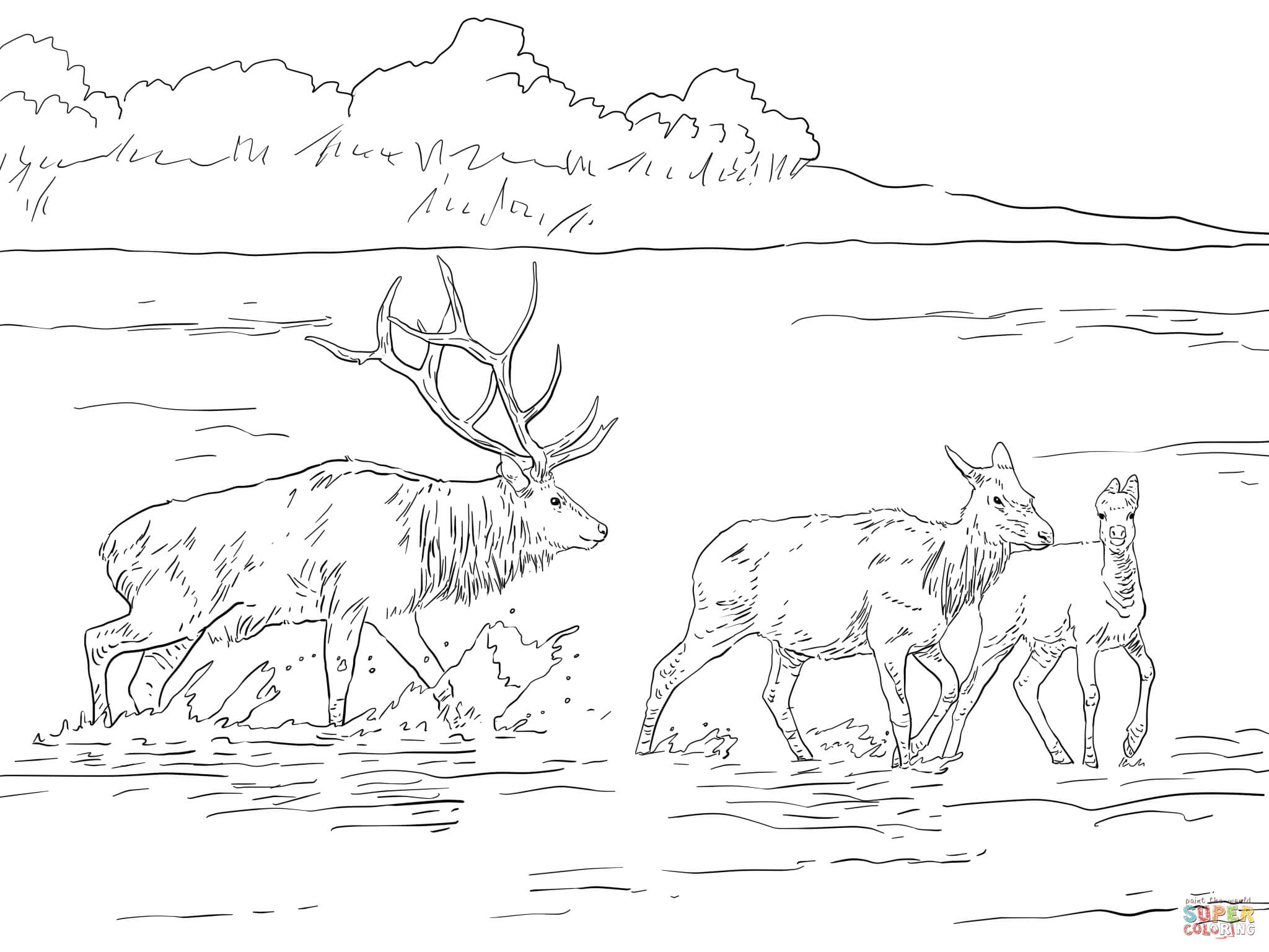 Elk Coloring Page - Democraciaejustica