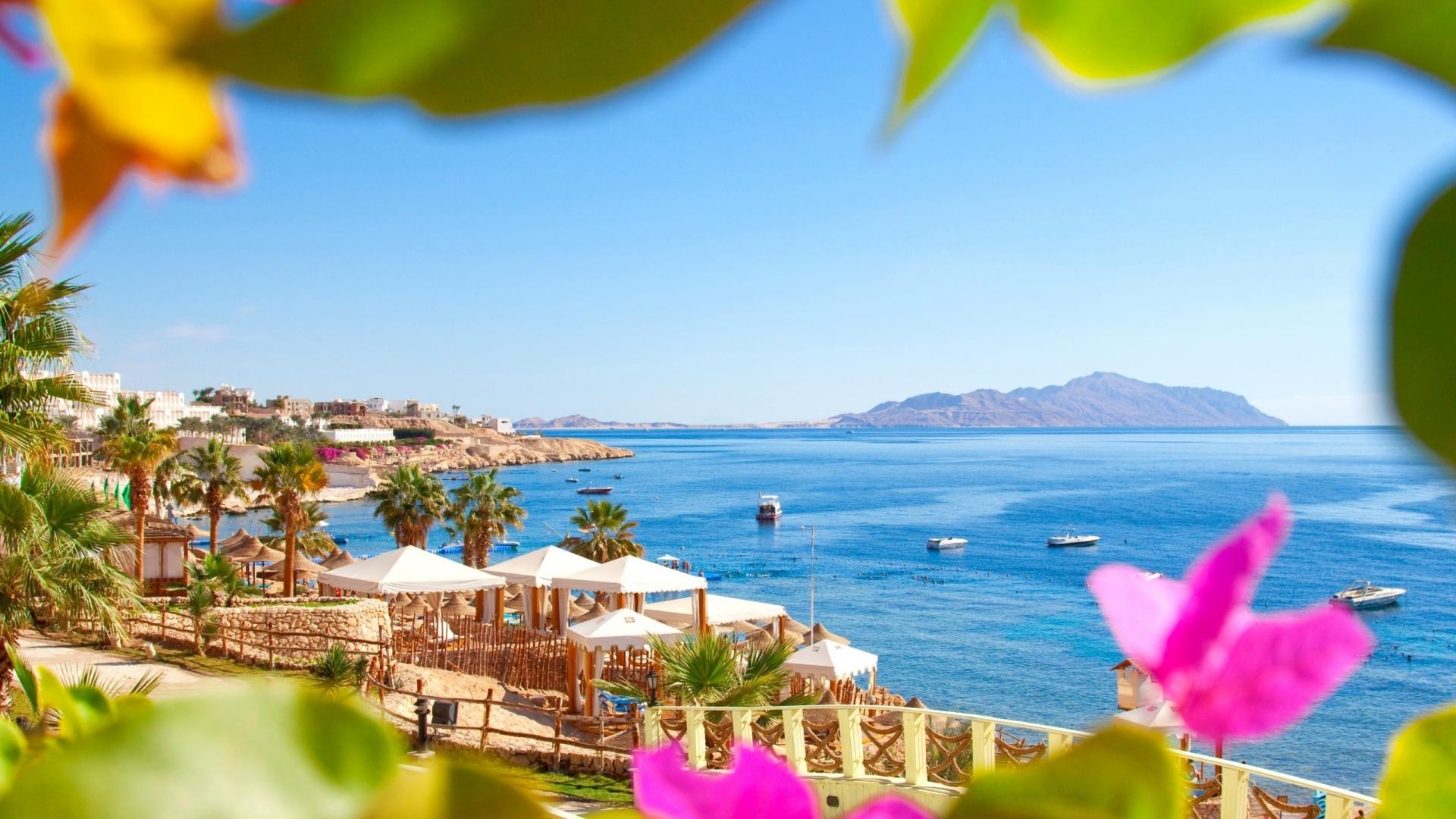 Bugatti Hd Wallpapers Free Download Beautiful Landscape From Egypt Beach Resort