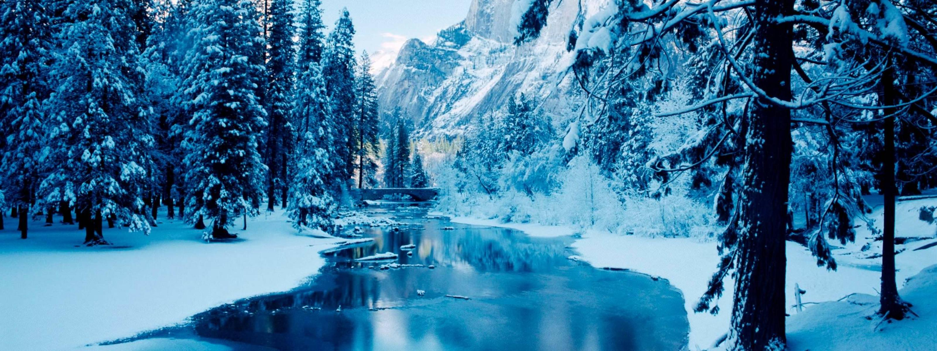 Cute White Dogs Wallpapers Cold Winter Mountain River White Nature Landscape