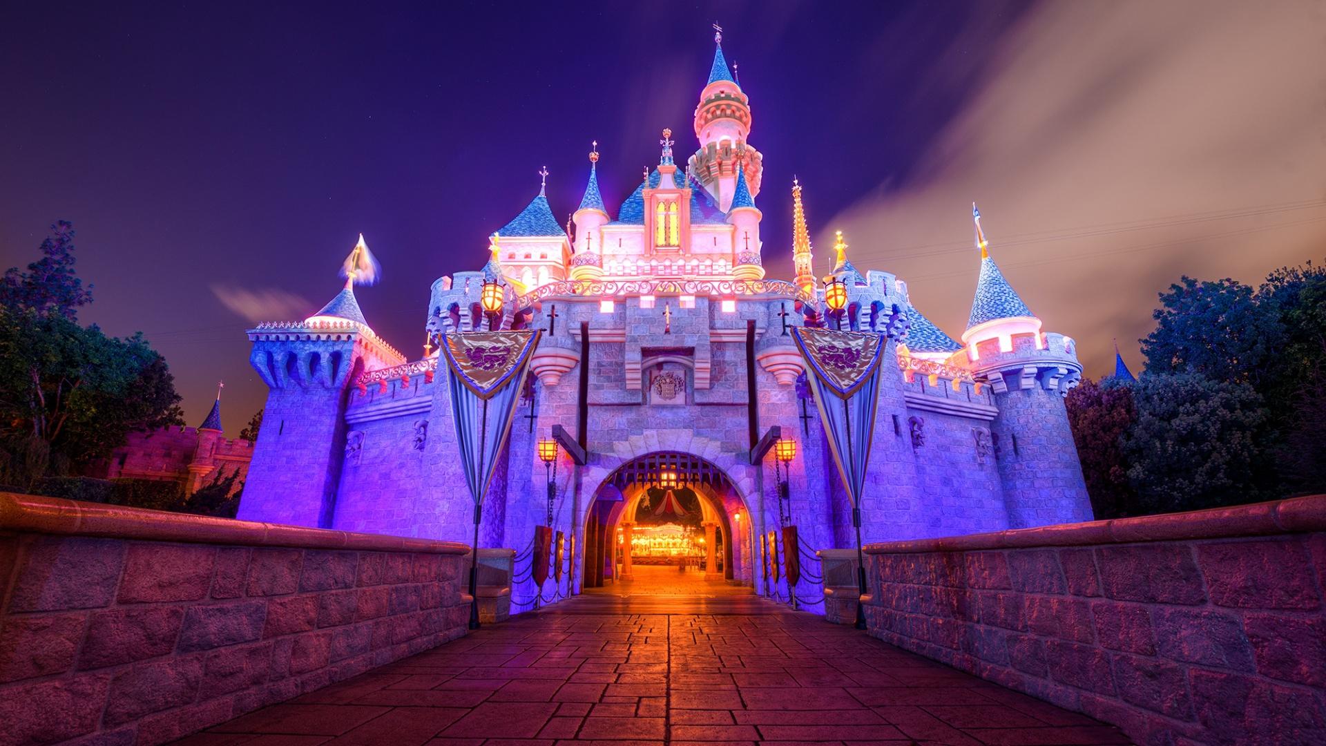 Cute Anime Dogs Wallpaper Disneyland Castle Beautiful In The Night