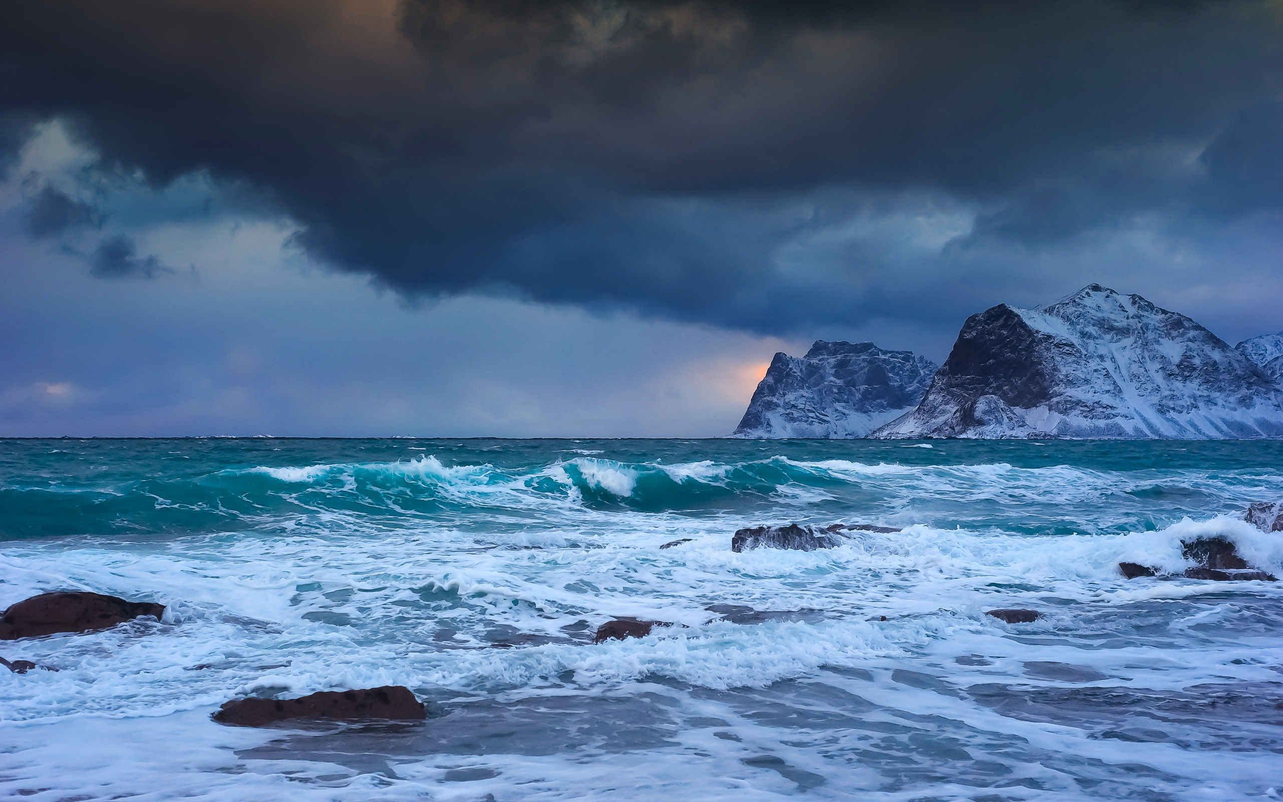 Cute Cats And Dogs Hd Wallpapers Storm At Sea In A Cold Winter Day