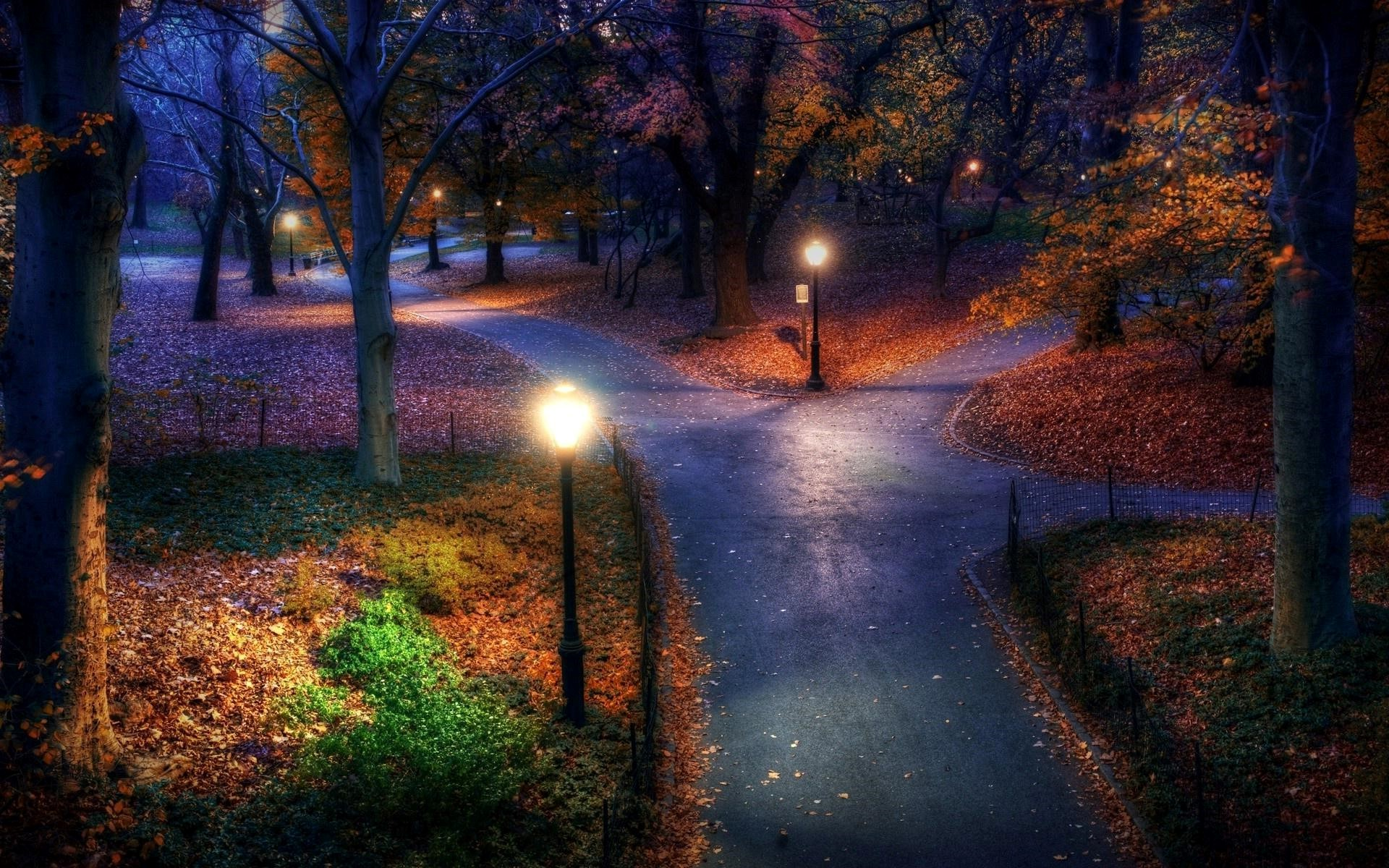 Horses In The Fall Wallpaper Three Paths In The Park Night Landscape