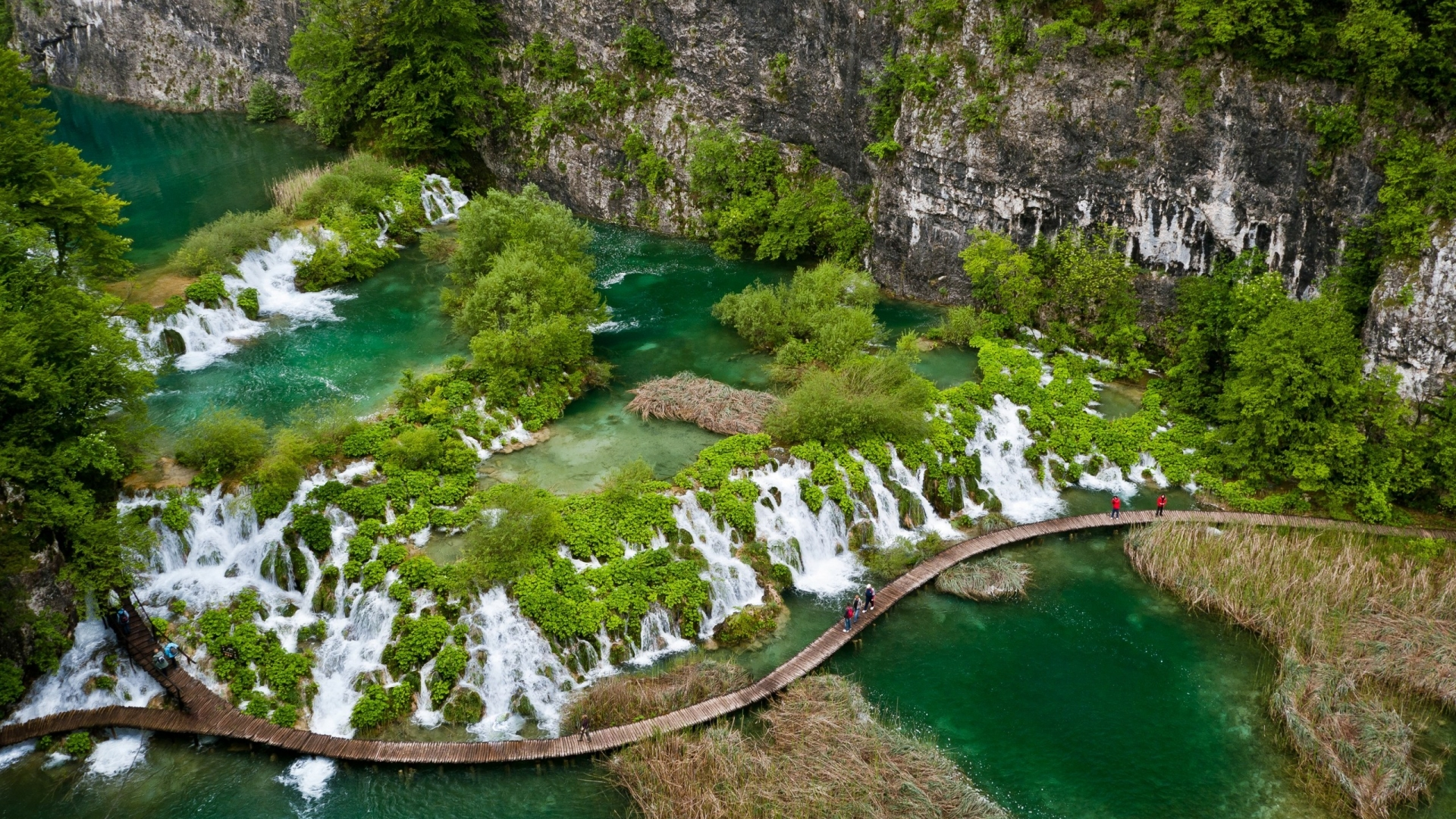 D Hd Wallpapers 1366x768 Tropical Green River Amazing Paradise Landscape