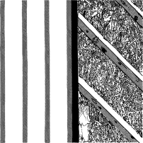 100-stripes