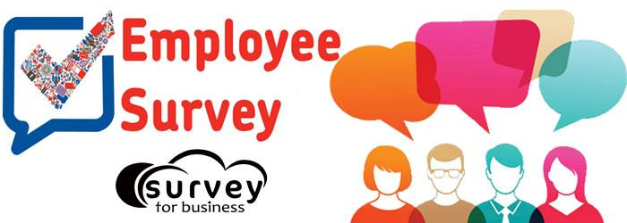 Employee Survey If Rightly Conducted Can Deliver Impeccable Success - employee survey