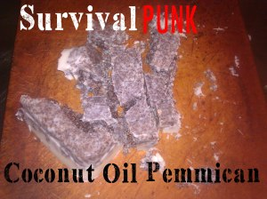 Coconut Oil Pemmican