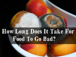 Do you know How Long Does It Take For Food To Go Bad? Do you know why mold toxin on food is bad for you? Find out today with this infographic, mold, food mold, mold exposure, mycotoxins