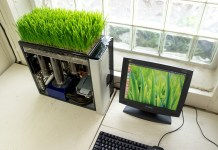 Simple Ways to Be Eco-Friendly When Using Your Computer