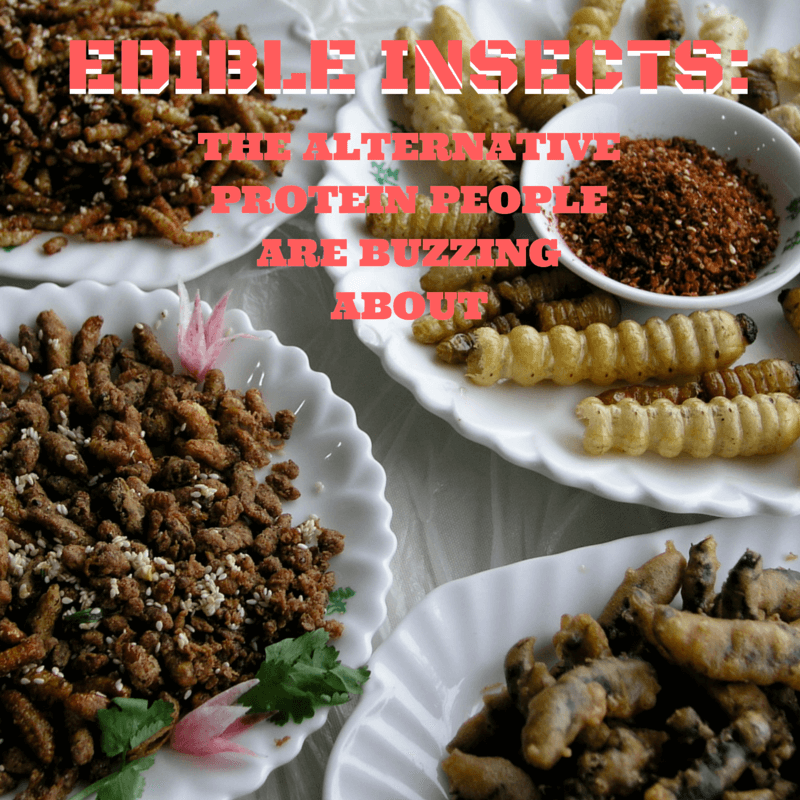EDIBLE INSECTS-