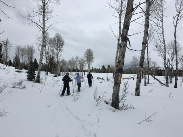 The crew on snowshoes in nature.