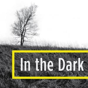 in-the-dark-logo