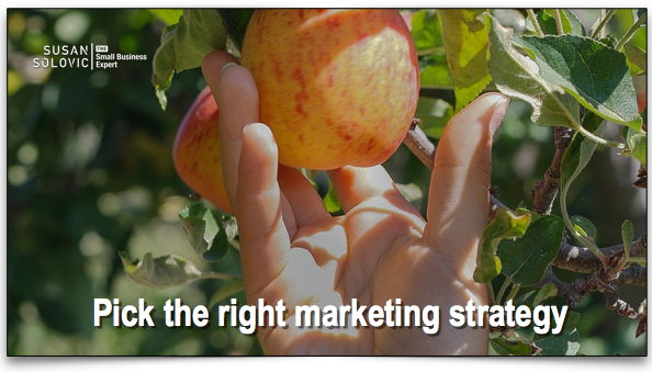 pick-the-right-online-marketing-strategy