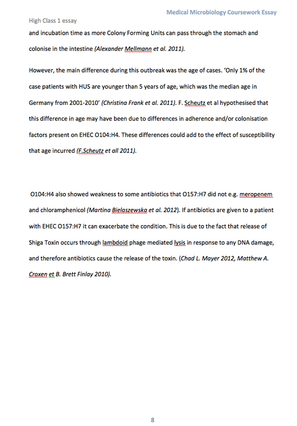 essay about dna dna rna worksheet worksheets library and print non