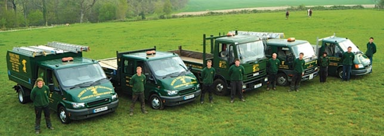Sussex-Tree-Surgeon-group