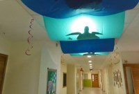 Ocean themed classroom examples to do at school to help ...