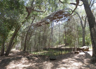 Enchantment at Peter Strauss Ranch