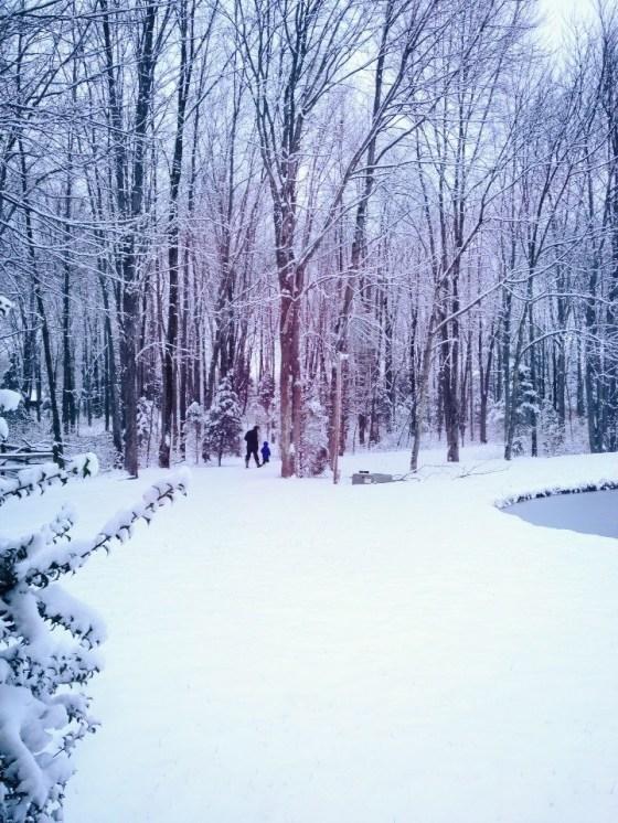 bb snow