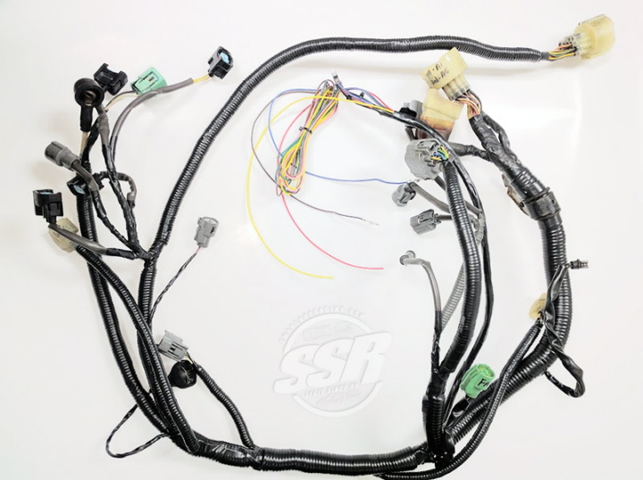 B-Series Harnesses