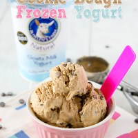 Chocolate Chip Cookie Dough Frozen Yogurt (Fro-Yo)