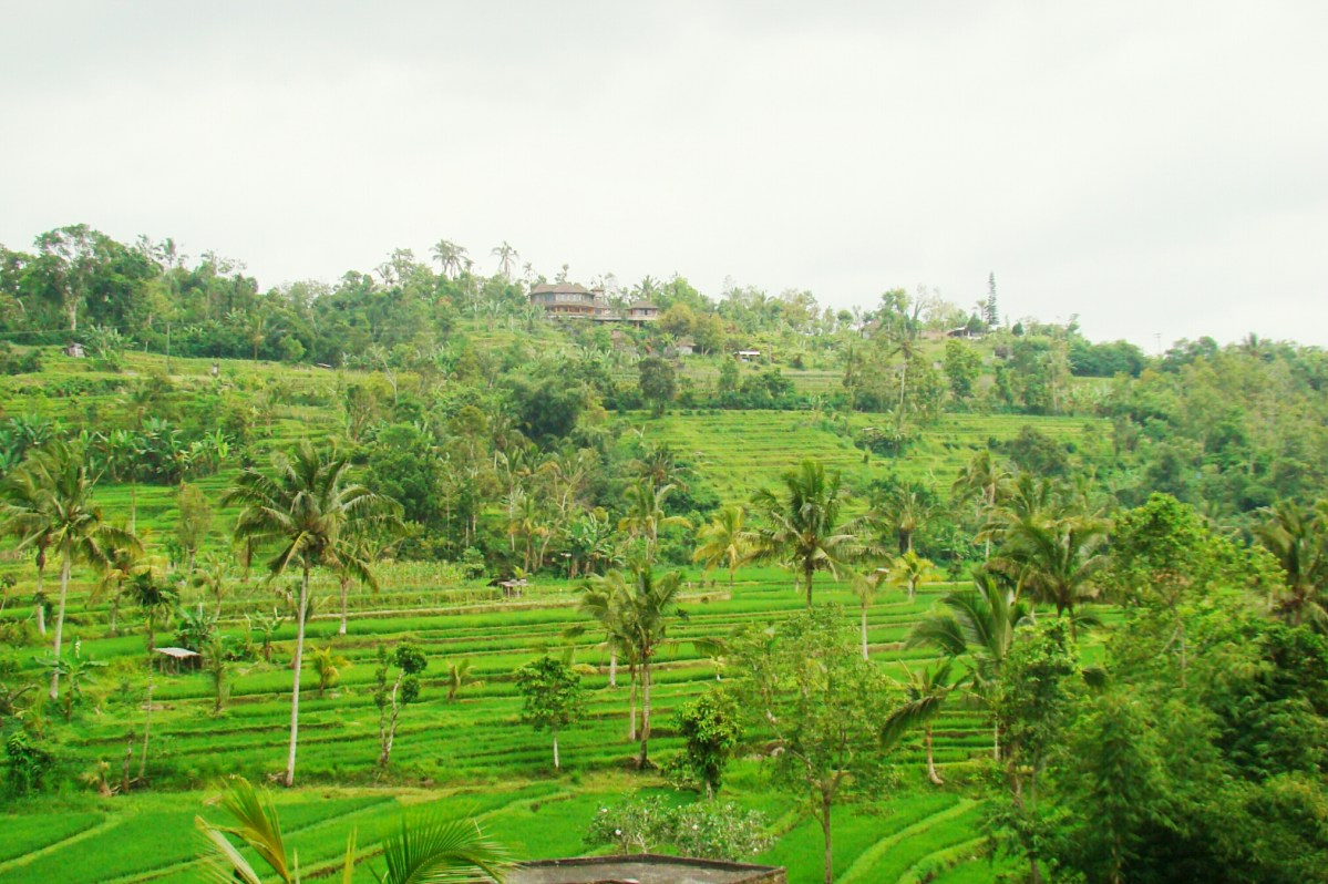 From the archives: Bali