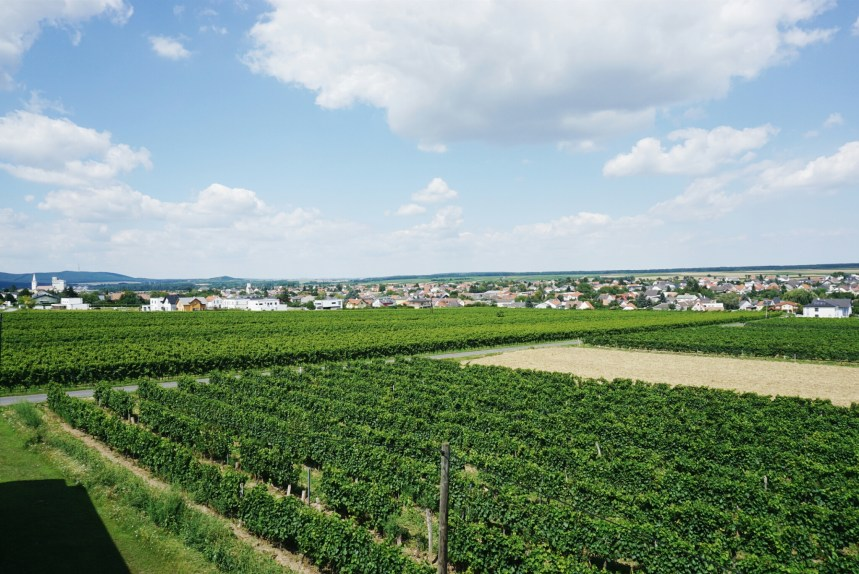 A weekend in the sunny land of Blaufränkisch (+ giveaway)