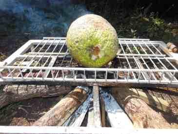 Two Jamaican Breadfruit Recipes