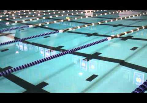 Mentality Of A Swimmer