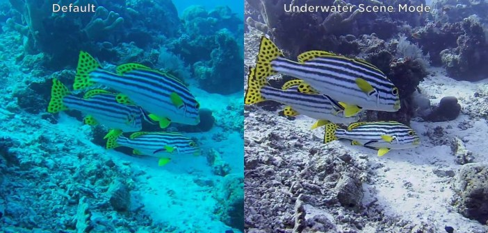 TomTom's action camera now automatically color-corrects your underwater footage