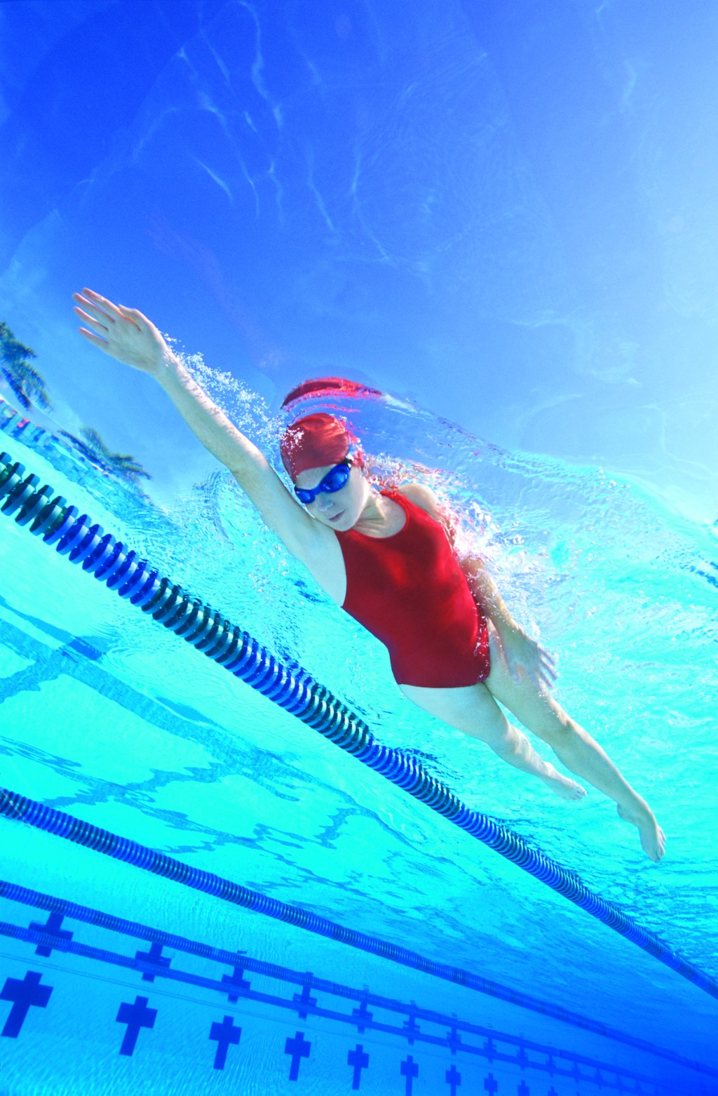 1 Adult Swimming Lessons