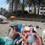 Strandløver på Ibiza