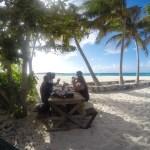 Bursdagslunsj i palmelund på Prikley Pers Cays