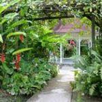 Lysthus i Diamond Botanical Garden, St Lucia. bilde fra Google.