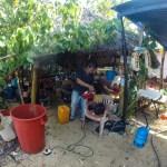 Bensinstasjonen i Nargana, Don Paco