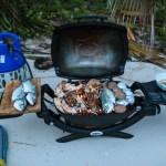 Beach BBQ med fersk fisk og hummer sammen med Puff og Nomad
