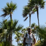 Veldig spessielle palmer når vi kom over ca 250 moh.