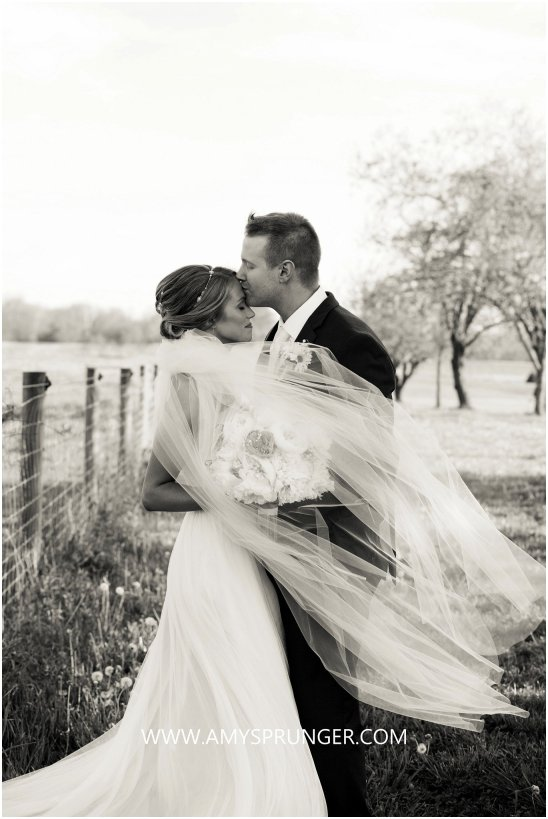 Amy Sprunger Photography