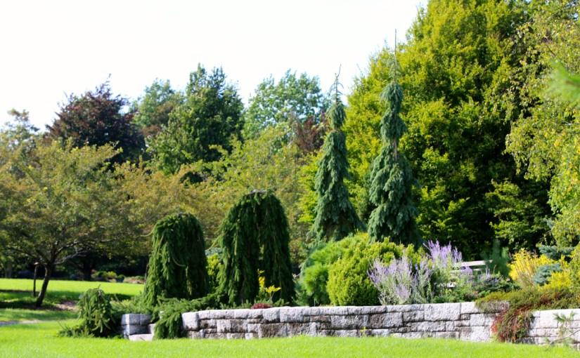 Garden Ramble, Thursday, August 6th, 10:00- 2:00