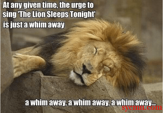 The Urge To Sing the Lion Sleeps tonight is a whim away