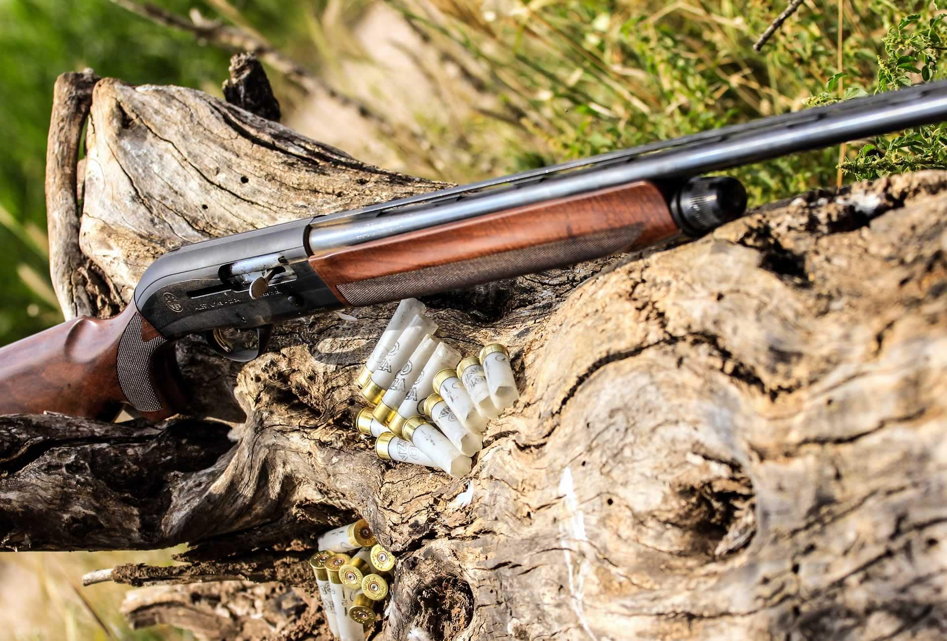 Escopeta caza de tortolas en Argentina