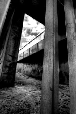 reims en noir et blanc 6