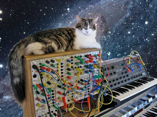 cat modular synthesizer