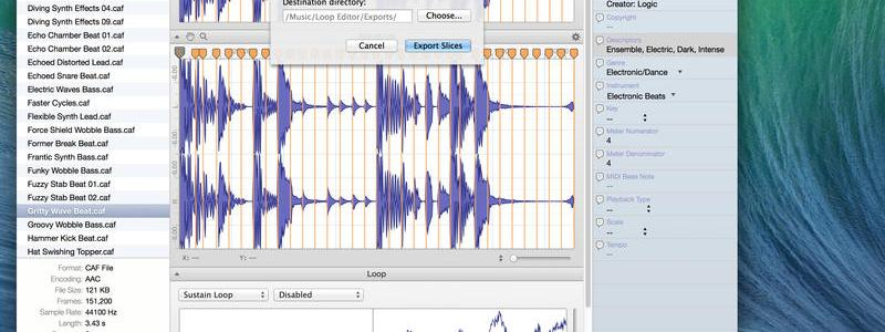 loop-editor