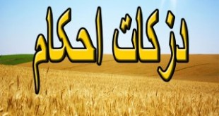 zakat-ahkam_Page_001 (Mobile)